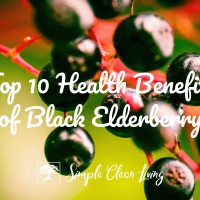 Top 10 Health Benefits of Black Elderberry