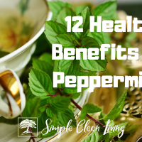 12 Health Benefits of Peppermint
