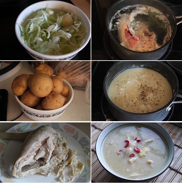 Potato, Leek, and Chicken Soup