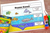 Ocean Zones For Kids: Learning About The Amazing Ocean