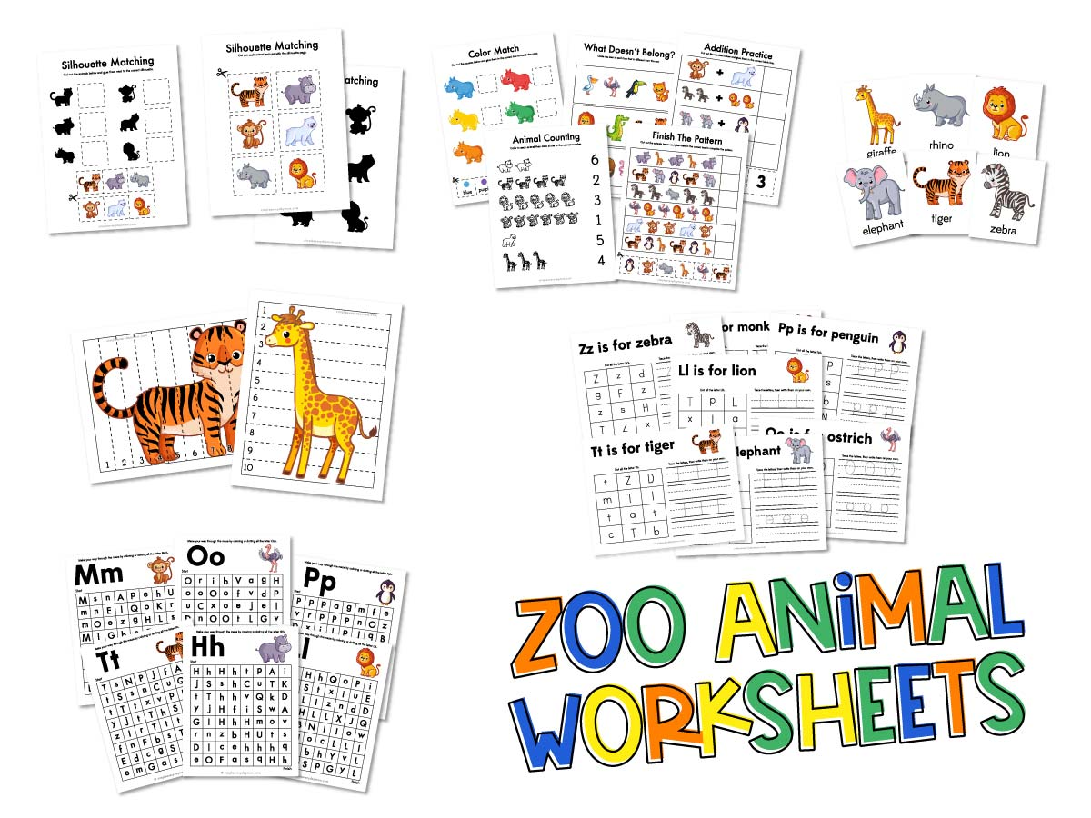 Zoo Animal Worksheets For Preschool