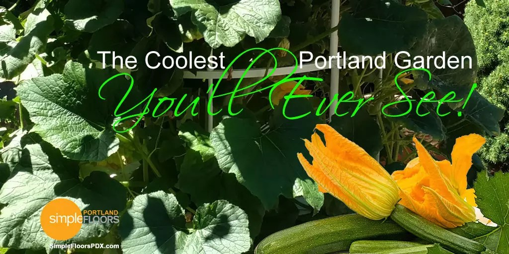 An amazing Portland Vegetable Garden
