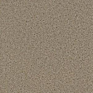 Zion Watchman Carpet by Tas Flooring