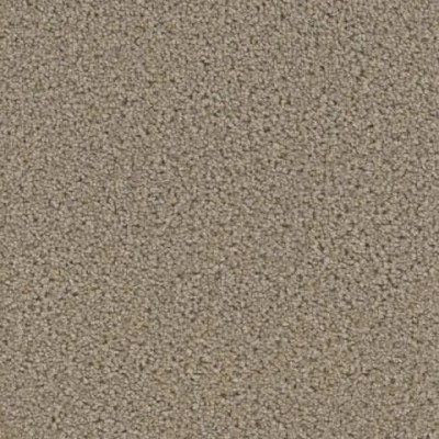 Zion Watchman Carpet by Tas Flooring