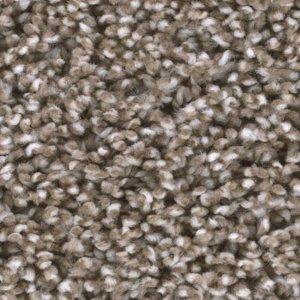 Tas Badlands Prairie Residential Carpet in Portland