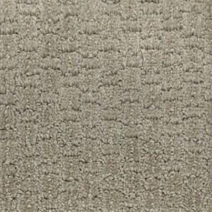 Sequence Daytona Carpet by TAS Flooring in Portland