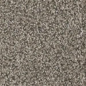Yosemite Bark Carpet by TAS Flooring in Portland