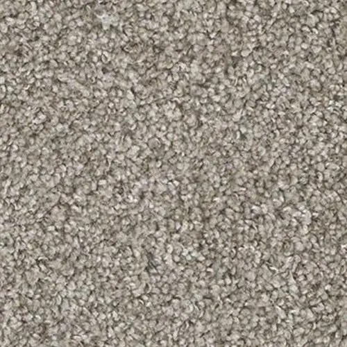 Yosemite Sierra Carpet by TAS Flooring in Portland
