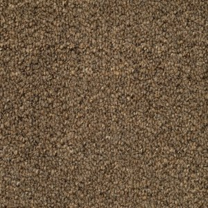 Tas Gateway Tan Residential Carpet in Portland