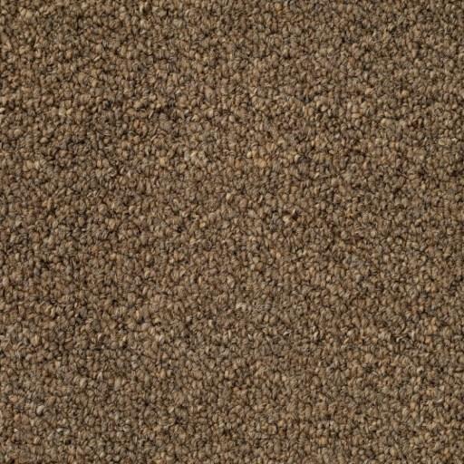 Tas Gateway Tan Residential Carpet in Portland