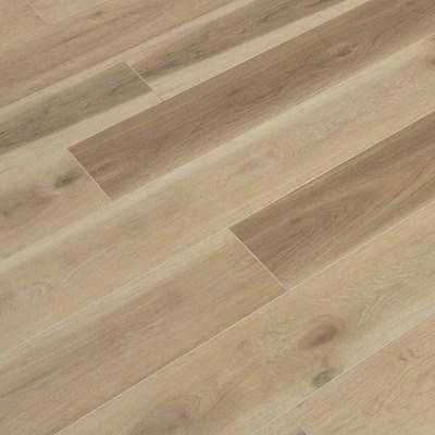 Cantina Oak PRO Mute Wide+ Click
