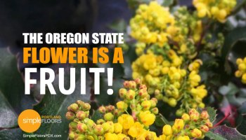The Oregon state flower is a fruit