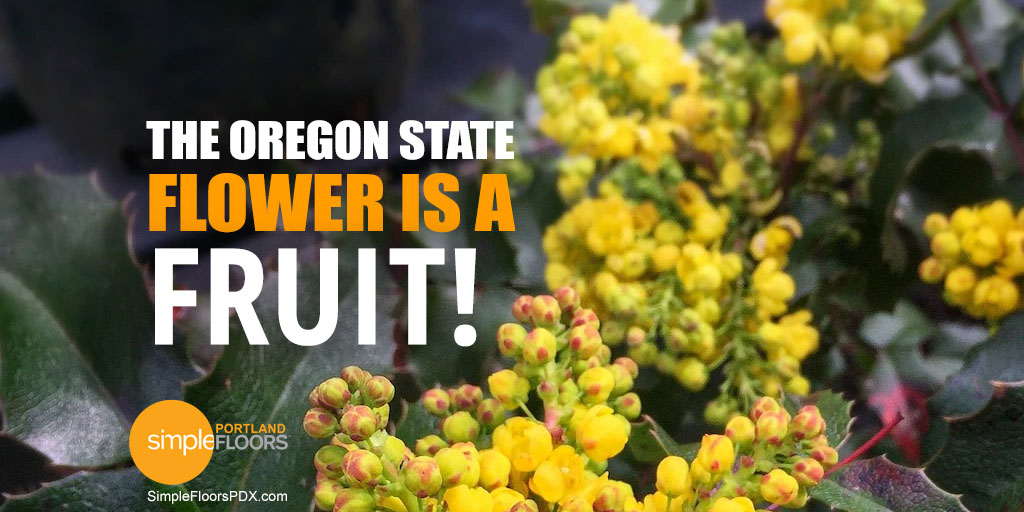 Why Is The Oregon State Flower A Fruit?