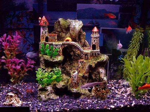 The Fish Tank Design Below Depicts That Real Picture Of What Is Expected In  Other Parts Of The Seabed. Apart From The Unique Plants And The Gravel, The  Look ...