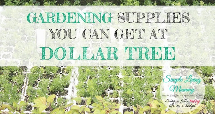 Think getting started as a gardener can get expensive? This blogger lists tons of gardening stuff you can get for just ONE DOLLAR at Dollar Tree!
