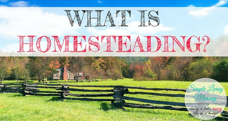 "The word ""homesteading"" seems to be everywhere these days. This mom explains exactly what homesteading is and how she and her family homestead on a budget."