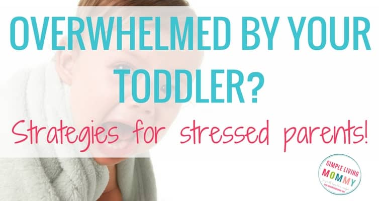 """I Hate My Toddler"" – Strategies for Stressed Parents"
