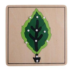 Puzzles botaniques Feuille - Arbre - Fleur