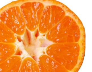 orange-slice-1324899-1279x852