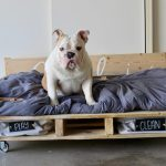 How To Make A Diy Dog Bed From Pallets Simplemost
