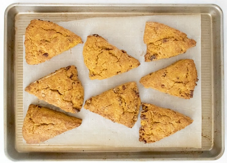 SIMPLE Pumpkin Brown Butter scones made from scratch on a baking sheet cut in triangles