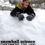 Snowball Science Activity For Kids