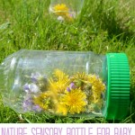 Wildflower Sensory Bottle