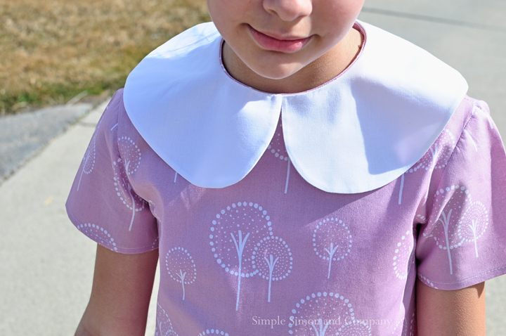 voilet dress peter pan collar