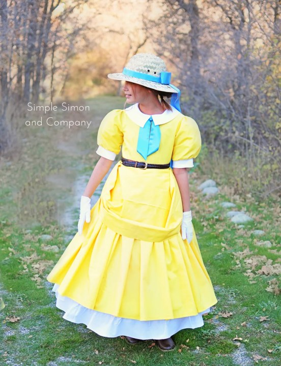 disney jane dress costume
