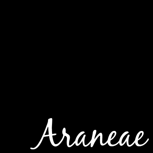 2015 Word of the Year:  Araneae