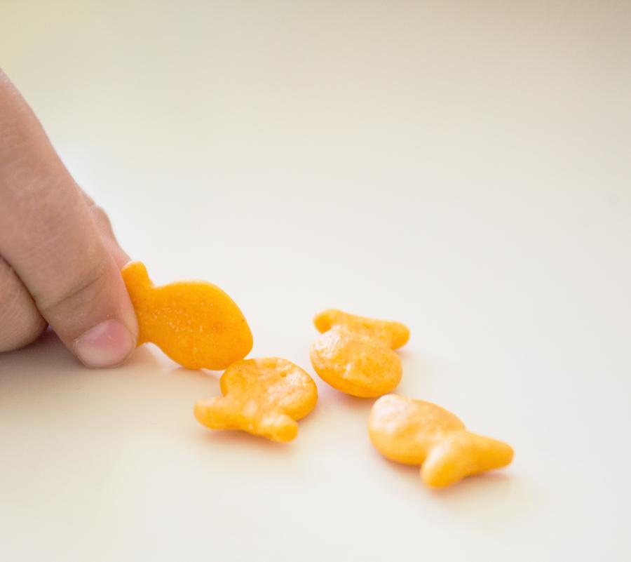 goldfish2_edited-1