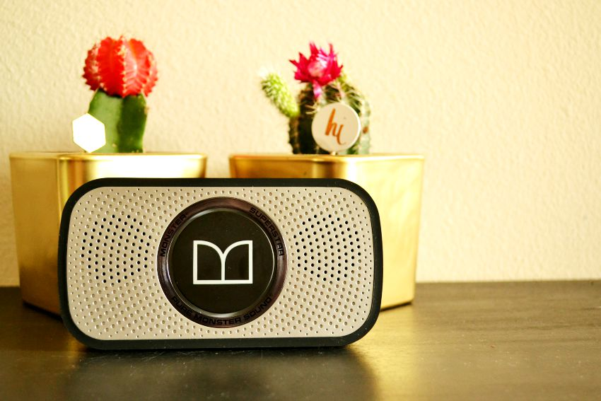 Monster Speaker with Cactus