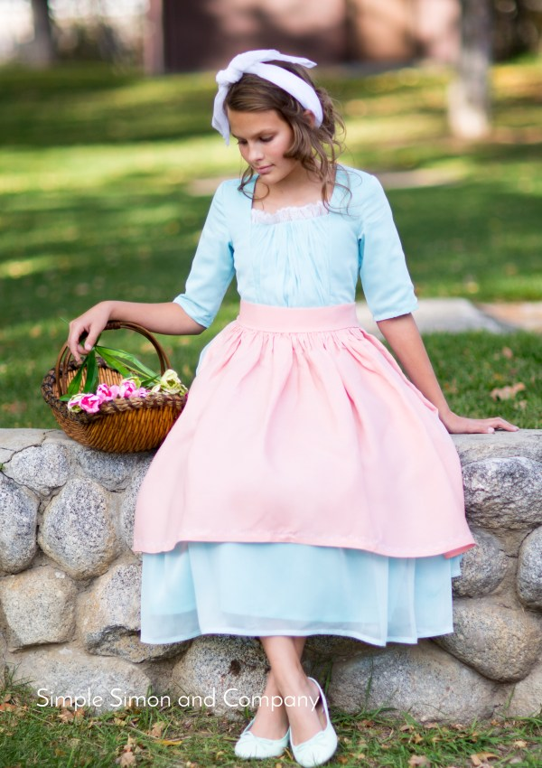Ella from Cinderella Costume