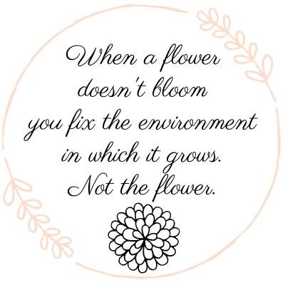 When a Flower Doesn't Bloom (An Art of Homemaking Post)