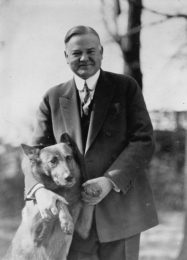 Image result for herbert hoover, chinese