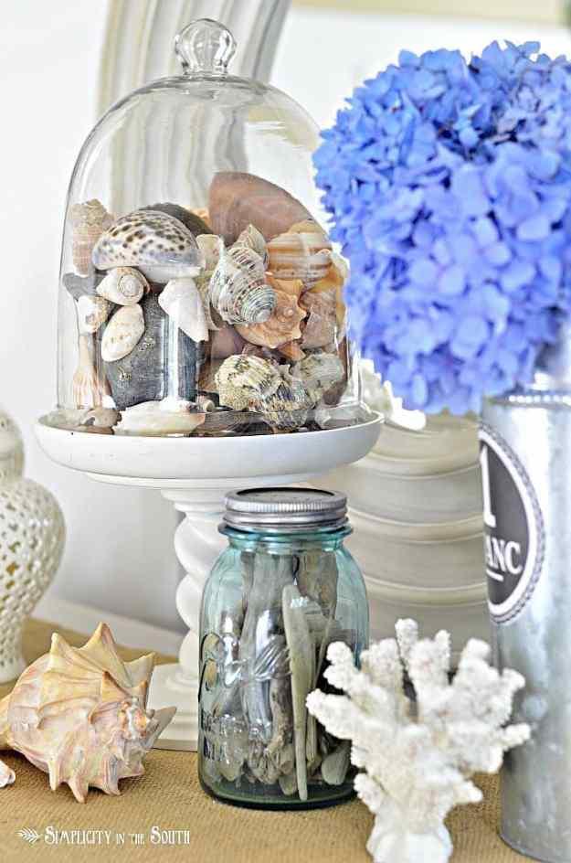 glass-cloche-with-sea-shells