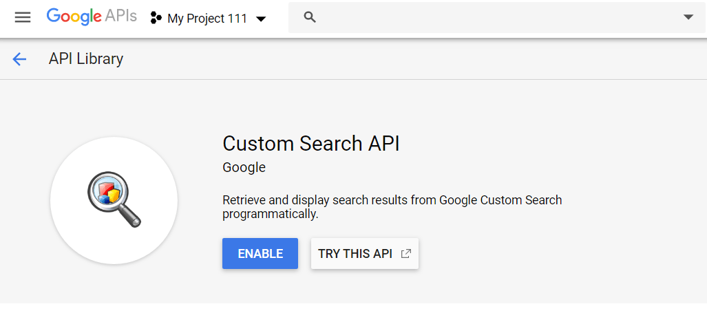 Google Custom Search API Python
