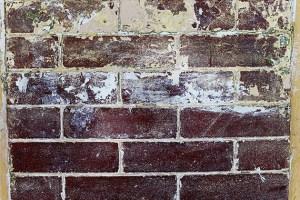 Stripping the Bricks
