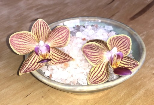Sea Salt and Orchid
