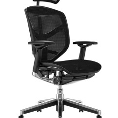 Ergonomic Chair Levers Coleman Folding Chairs Enjoy Elite Office Ergohuman Best Selling Black Mesh With Head Rest