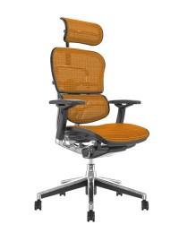 Ergohuman Ergonomic Office Chair with Headrest - Simply ...