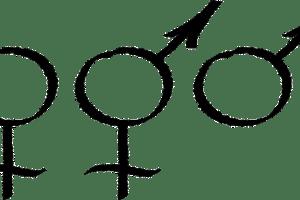 gender data gap