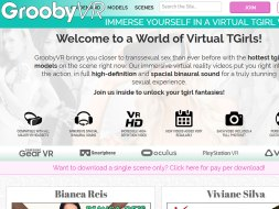 Grooby VR