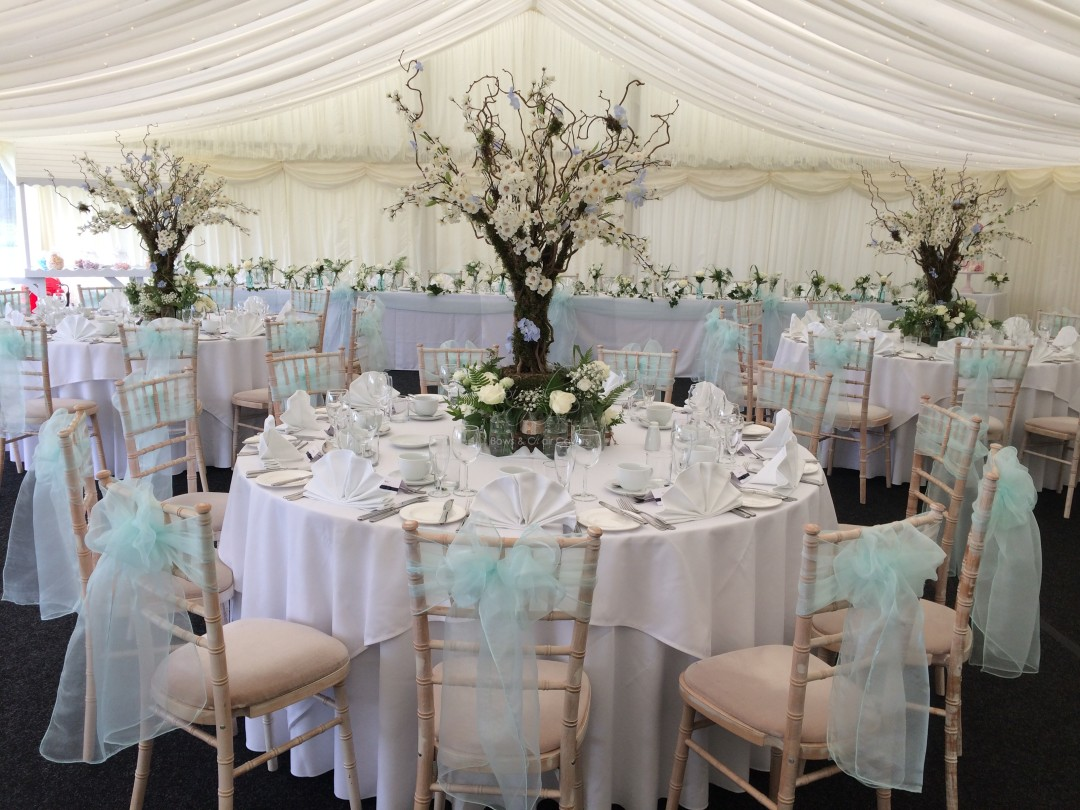 chair covers for weddings essex french accent chairs wedding and planning gallery