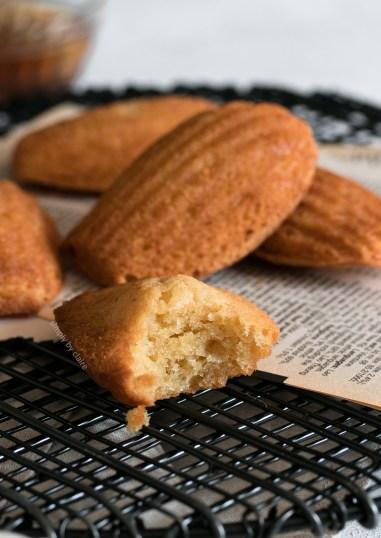 soy-flour-madeleines-05