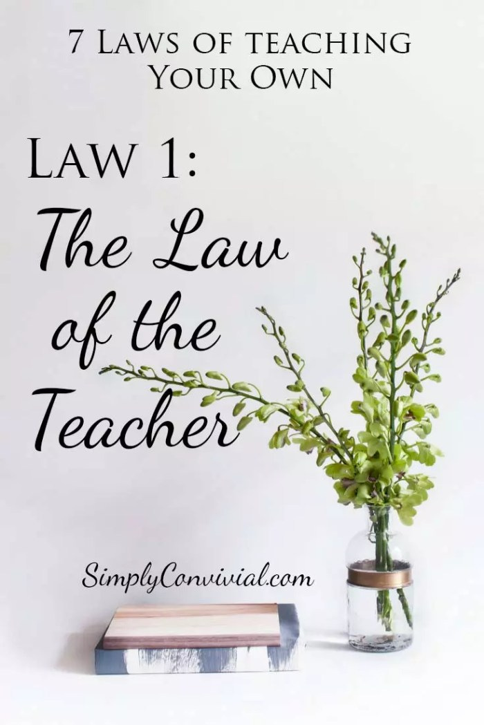 Seven Laws of Teaching Your Own- Law 1: The Law of the Teacher.