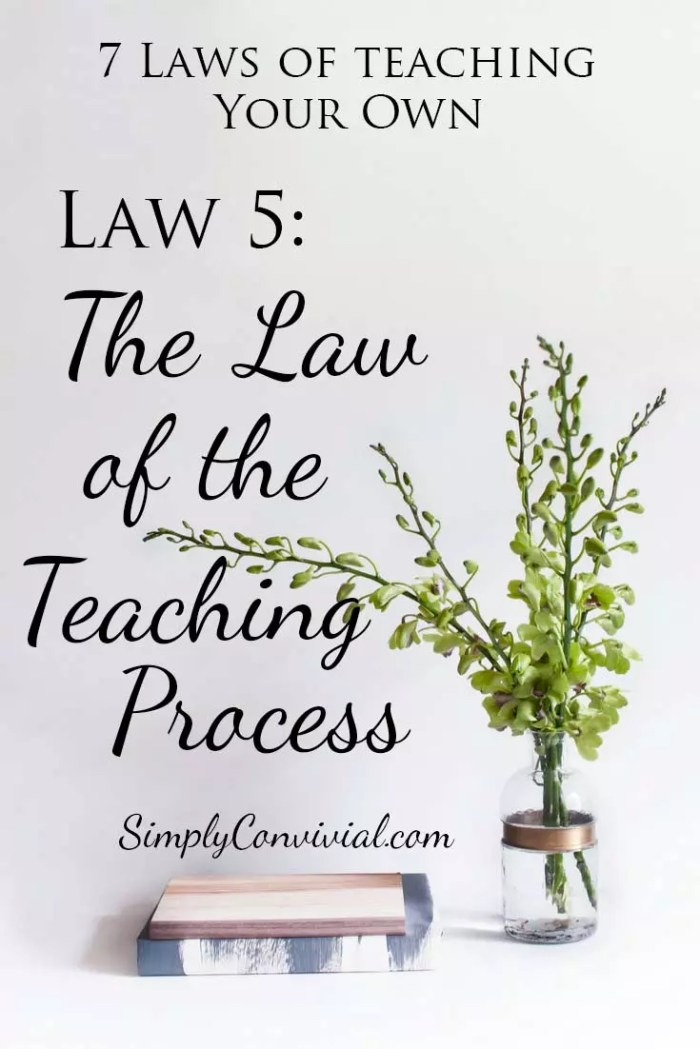 7 Laws of Teaching: Law 5, the Law of the Teaching Process.