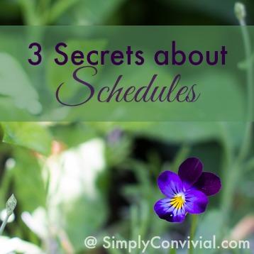 secrets-schedules