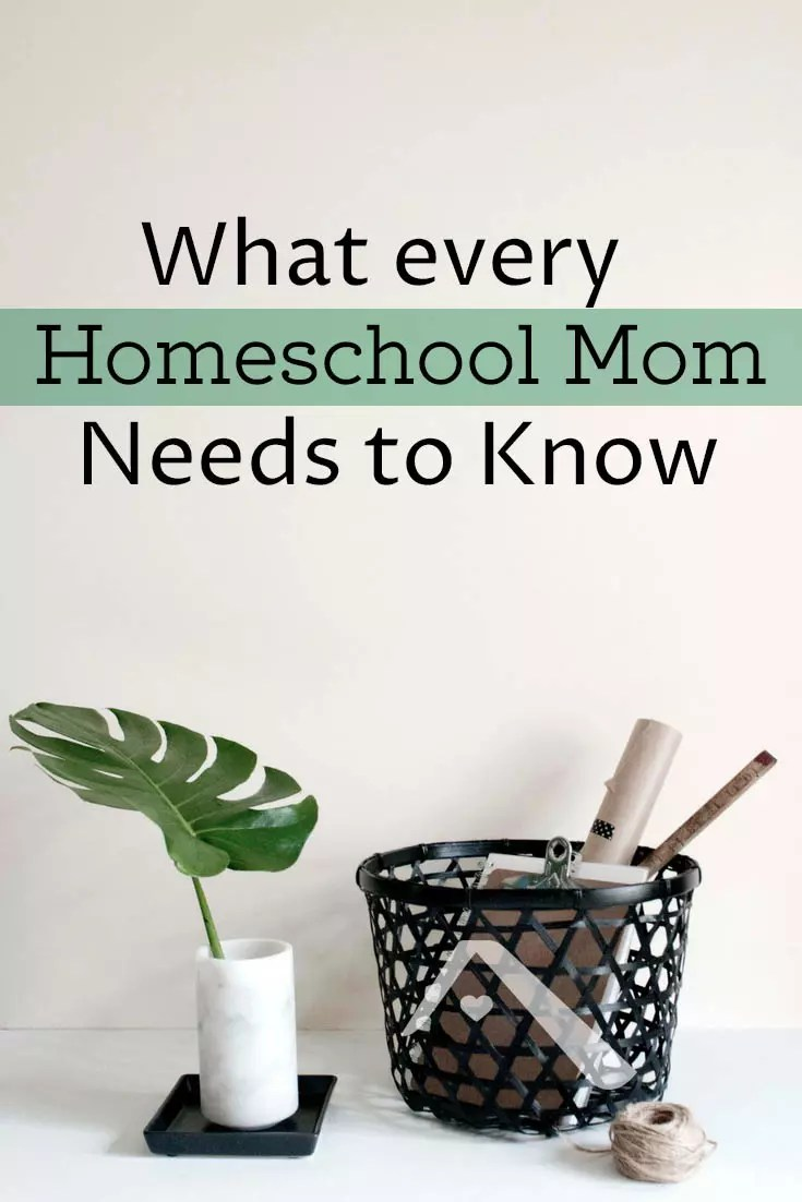 It is the homeschool mom who is responsible for the tone & energy of her home. If inertia is taking over your homeschool day, here are some solutions.