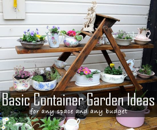 basic-container-garden-ideas-for-any-space-budget